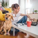 Home Office: Wie Sie den Chef überzeugen und wie Sie produktiv arbeiten